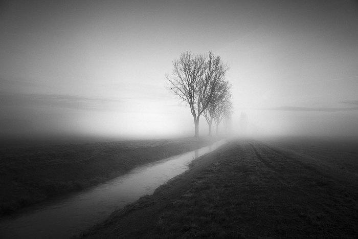 terre-de-brume